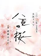 八重の桜 動画の画像