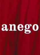 anego 動画の画像