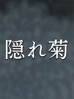隠れ菊 動画の画像