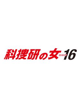 科捜研の女 第16シーズン 動画の画像